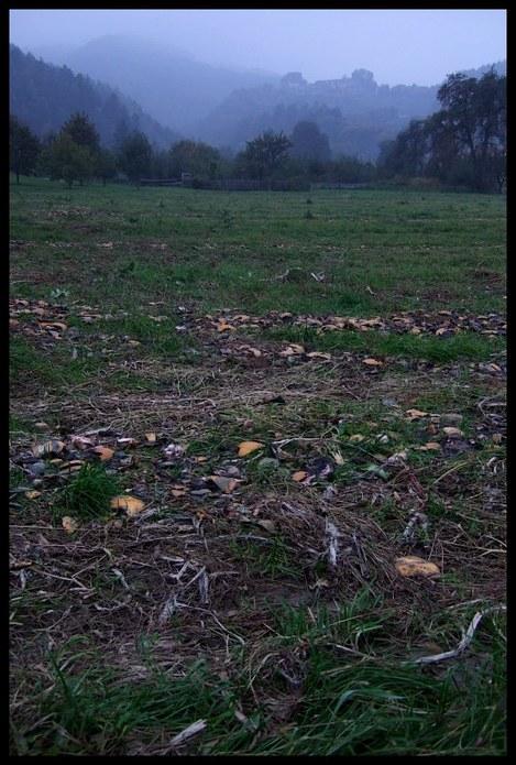 Smashing_pumpkins_by_cr